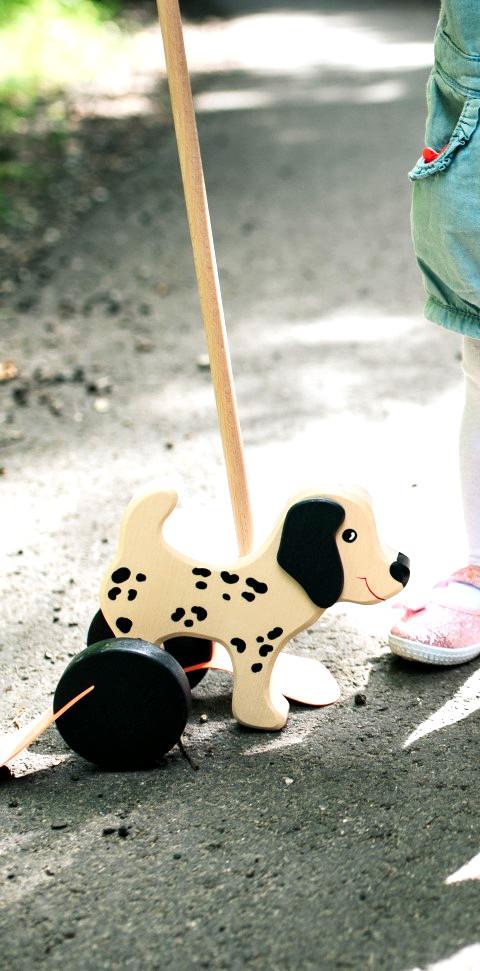 zabawki do pchania